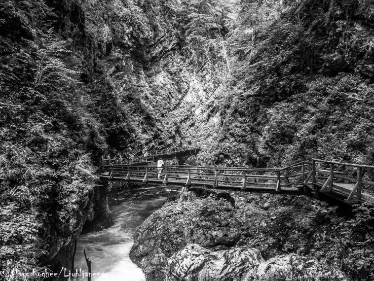 You can walk 1.6 kilometres through the Bled Gorge. Most of the way goes over wooden bridges.